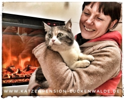 ####h1### - IMG 8245 min - Katzenpension - Tierpension - Tierbetreuung